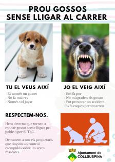 Prou gossos sense lligar al carrer. Cartell d'avís