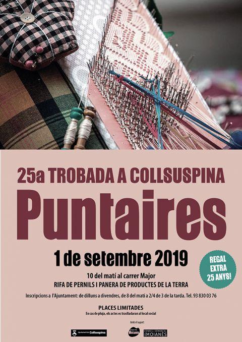 25a Trobada de Puntaires a Collsuspina